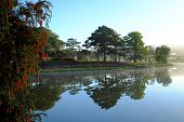 Scenery of Than Tho lake, Da Lat city, Viet Nam in morning, pine tree in forest reflect on water make romantic and fresh view for ecotourism in summer poster