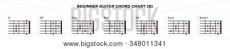Basic Guitar Chord Chart Icon Vector Template. B Key Guitar Chord.