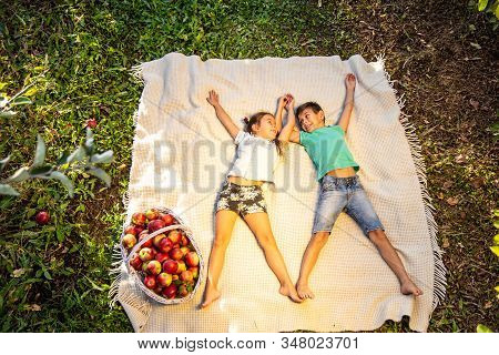 Top-view Shot Of Cheeky Siblings Laying On The Plaid In Garden, With Big Basket Of Apples Near Them,