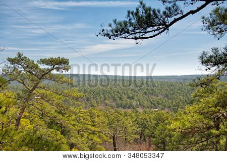 Sunny view across pine forest treetops at Robber's Cave, Oklahoma, in very early spring