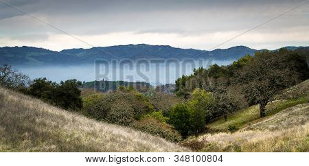 California Hills With Evening Fog In The Mountains Of Sonoma County Wine Country.