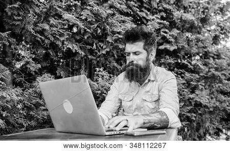 Just Freelancing. Freelance Computer Programmer Enjoying Coffee And Free Wifi. Bearded Man Working F