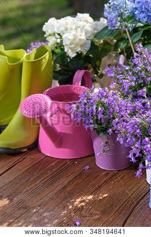Gardening - Set Of Tools For Gardener And Flowerpots In Sunny Garden