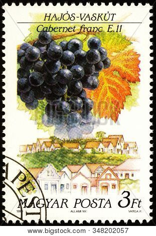 Moscow, Russia - January 30, 2020: Stamp Printed In Hungary Shows Grapes Cabernet Franc, Hajos-vasku