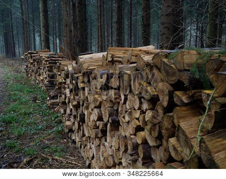 Long High Woodpile In An Autumnal Forest