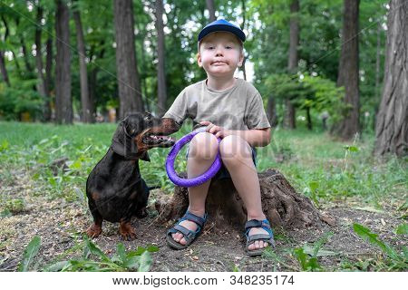 Cute Caucasian Baby Boy Sits On The Stump At Green Park Or Forest, Holding Puller Dog Toy, With Blac