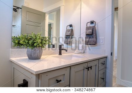 Bathroom Vanity Cabinet With Sink Black Faucet Ornamental Plant And Mirror