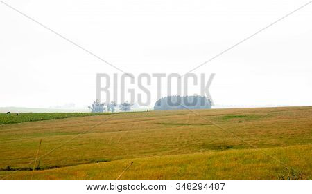 Rural Area Or Field Is Any Geographical Region Not Classified As Urban, Non-urbanizable Or Intended