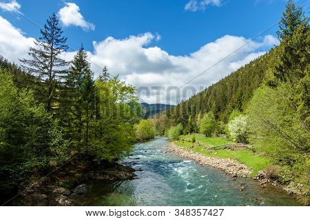 River In Mountains. Wonderful Springtime Scenery Of Carpathian Countryside. Blue Green Water Among F