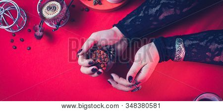 A Fortune Teller Holds A Dried Rowan Tree For Divination. Blank For The Designer.  The Concept Of Ma