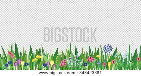 Spring Garden Grass And Flowers Border. Cartoon Vector Flower Background. Green Elements Objects Flo
