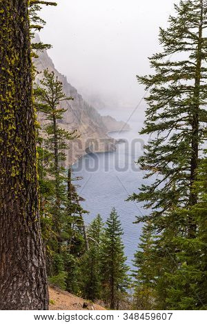 Mist Through The Trees On A Stormy Day By Crater Lake, Oregon, Usa