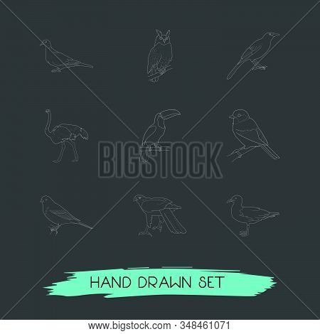 Set Of Birds Icons Line Style Symbols With Blackbird, Finch, Hawk And Other Icons For Your Web Mobil