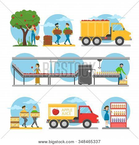 Apple Juice Production Steps Vector Isolated. From Fresh Fruit