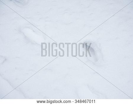 Human Footprints In Deep Snow On Sunny Day
