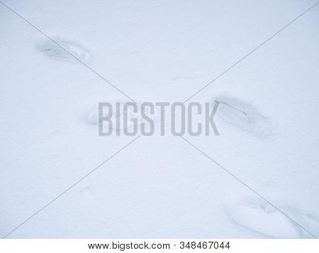 Human Footprints In Deep Snow On Sunny Day.