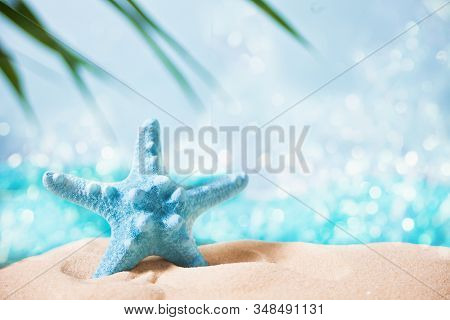 Red Starfish In A White Sand Under A Palm Leaf