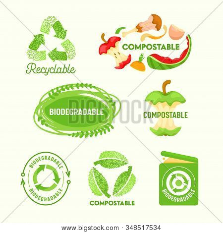 Set Of Environmental Labels, Recyclable Triangle Sign, Compostable Waste, Biodegradable Garbage Litt