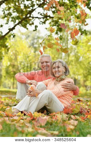 Senior Couple Sitting On Autumn Leaves In Park
