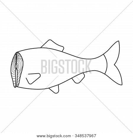Sea Fish Vector Icon.outline, Line Vector Icon Isolated On White Background Sea Fish.