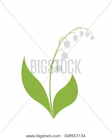Lily Of The Valley Flower Isolated Vector Image. Spring Floral Element For Design