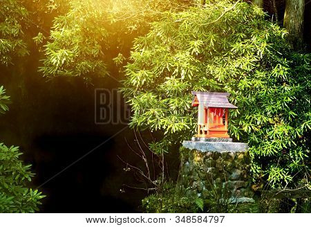 Small shinto altar in the morning forest, Japan. Sunny mysterious oriental background. Copy space for text. Mock up template.