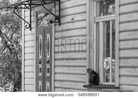 A Cat Enjoys A Summer Day By A Window At Tallinn, The Capital Of Estonia. The Scene Is Very Tranquil