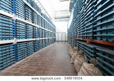 gold mining storage rock core samples  geology drilling industy