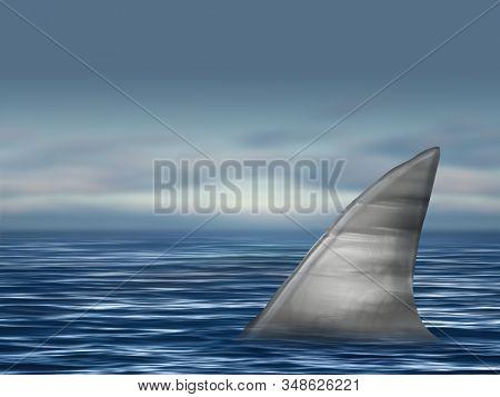 Shark fin on surface of ocean