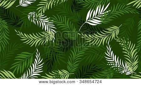 Palm Leaf Pattern. Green Tropical Leaves Wallpapers. Exotic Tree Plants Background. Summer Botanical