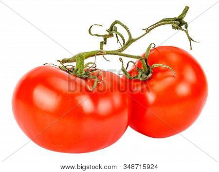 Two Ripe Red Tomatoes On A Green Branch Close-up Isolated On White Background