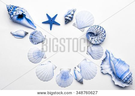 Shells Pattern. Trendy Aquamarine Light Blue Pastel Color Sea Shell With Starfish And Shells In Shap