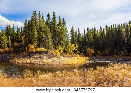 The Canadian Rockies. The valley of Kananaskis mountain park. Bright autumn day in Indian summer. Shallow river with yellow autumn leaves. The concept of active, ecological and photo tourism