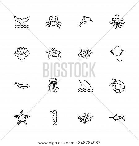 Marine Life, Sea Animal Outline Icons Set - Black Symbol On White Background. Marine Life, Sea Anima