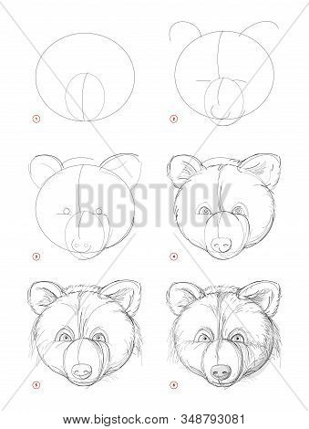 How To Draw Sketch Of Imaginary Cute Bear Head. Creation Step By Step Pencil Drawing. Education For