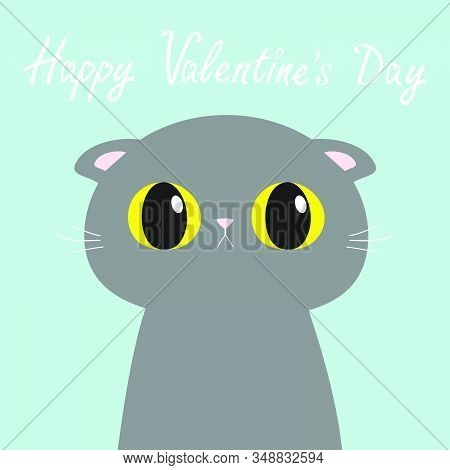Happy Valentines Day. British Shorthair Cat Round Head Face, Body. Cute Funny Cartoon Character. Big