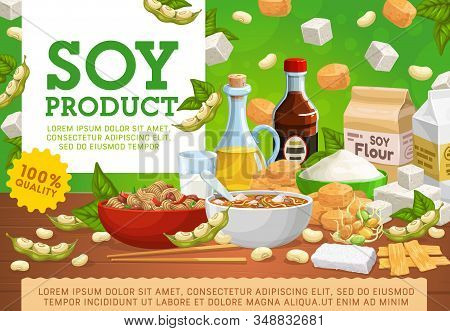 Soy Food And Organic Vegan Products, 100 Percent Quality Natural Eating. Vector Soy Meat Miso Soup A