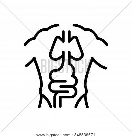 Black Line Icon For Anatomy Body Corporality Human Biology Organ Physiology Stomach Intestine