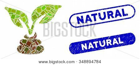 Mosaic Garden Natural Fertilizer And Corroded Stamp Seals With Natural Text. Mosaic Vector Garden Na