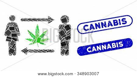Collage People Exchange Cannabis And Grunge Stamp Seals With Cannabis Phrase. Mosaic Vector People E