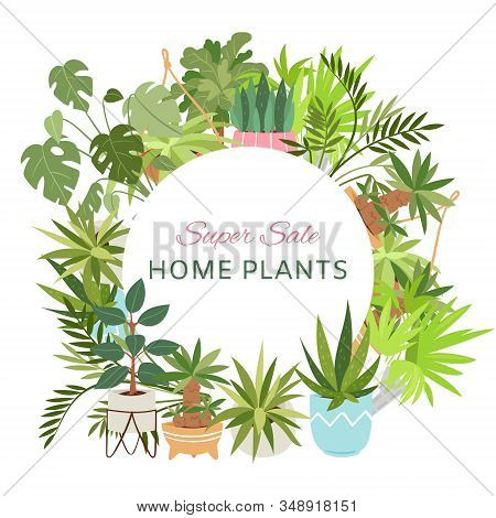 Home Plants In Circle Wreath Sale Poster Vector Illustration. Houseplants, Indoor And Office Plants