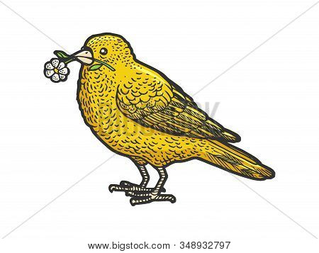 Canary Bird With Camomile Daisy Flower In Beak Sketch Engraving Vector Illustration. T-shirt Apparel