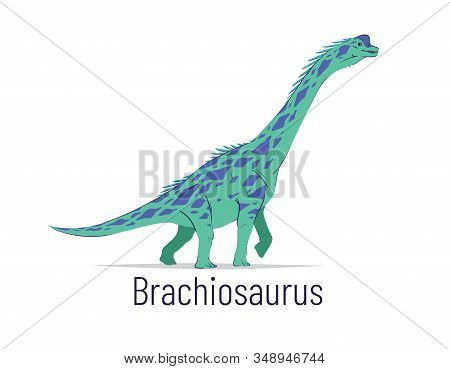 Brachiosaurus. Sauropodomorpha Dinosaur. Colorful Vector Illustration Of Prehistoric Creature Brachi