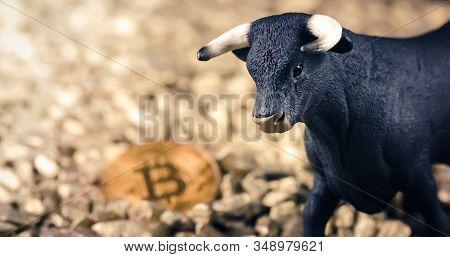 Bullish Bitcoin Price Rise Concept. Bull Market And Rising Value On Digital Gold