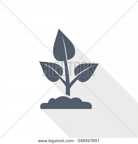Nature Plant Vector Icon, Organic, Ecology Concept Flat Design Illustration