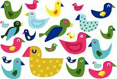 lots of coloured bird collection - vector illustration poster