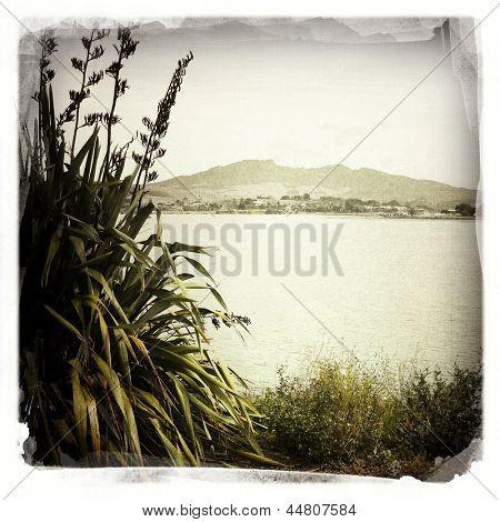 Mt Karioi, water, Raglan, New Zealand