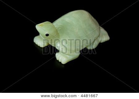 green jade Turtle from china with head up poster