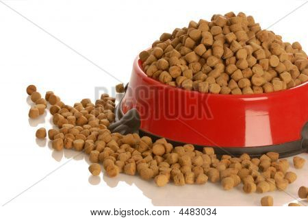 Dog Food In Red Dish