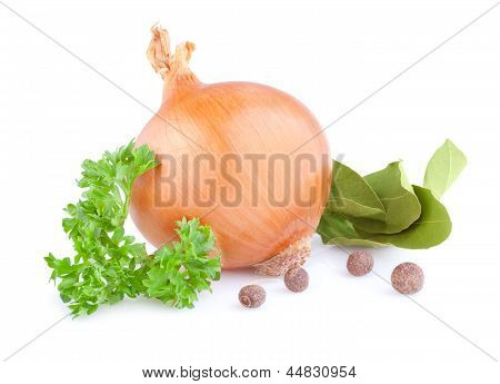 Fresh Gold Onions, Pimento, Parsley And Bay Leaves Isolated On White Background